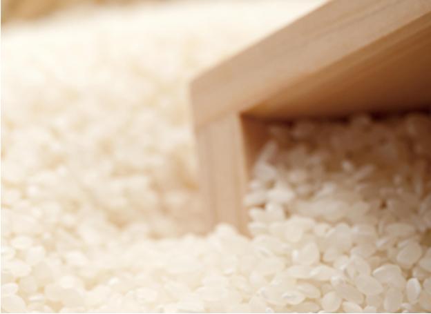 天ぷらたかおこだわりの米
